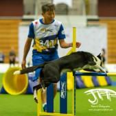 Large Jump (34 av 90)