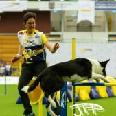 Large Jump (39 av 90)