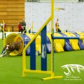 Large Jump (41 av 90)
