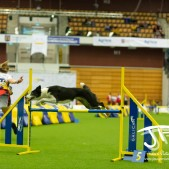 Large Jump (51 av 90)