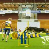 Large Jump (57 av 90)