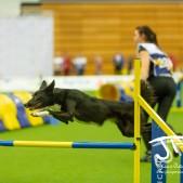 Large Jump (63 av 90)