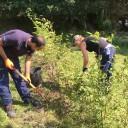 Två deltagare gräver i rabatten.