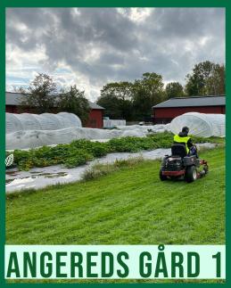 Allmön kurs inriktning utemiljökurd på Angereds gård 1.