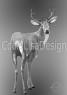 hjort på grå bakgrund