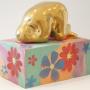 Fat lady in gold - Fat lady flower