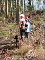 Illka o Ulpu i final unghundsderby 2017