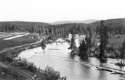 Bildarkiv Jamtli: Fiskodlingen i Kälarne år 1920