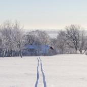 Vinter på Lodgen