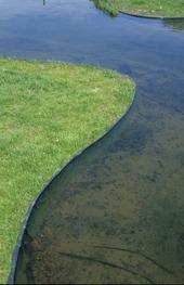 Kantband runt dammen