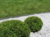 Kantband runt gräsmattan, ecolat
