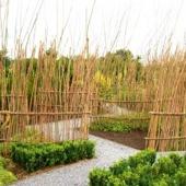 Snygga trädgårdsgångar med avskilljare, ecolat kantband