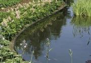 Kantband till dammar