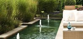 Rengöring för baddammar, prydnadsdammar och springbrunnar