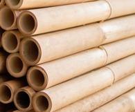bambu japansk trädgår bamburör trädgårskonst trädgårdsdammar