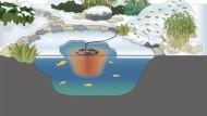 doppvärmare till dammen , oase icefree, trädgårdsdammen vintern