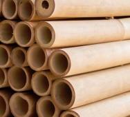 bambu japansk trädgård trädgårskonst