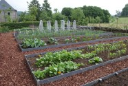 Kantavskiljare trädgårdslandet ecolat kantband