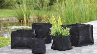 planteringskorgar vattenväxter dammväxter dammtillbehör