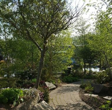 Dammcenter visningsträdgård