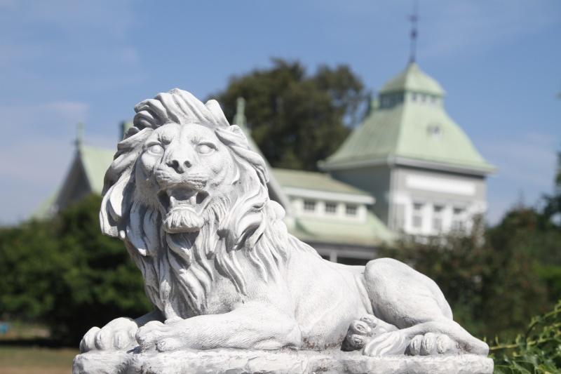 trädgårdskonst lejon