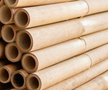bambu, bambupinnar, bamburör