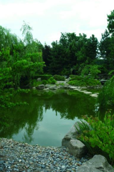 japansk trädgård  zen trädgården  trädgårdsdamm
