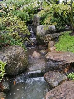 Japansk trädgård, porlande bä