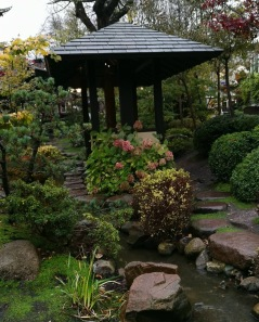 Japansk trädgård miljö