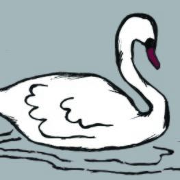 Illustration_Swan_Lingon & Blåbär