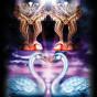 Tarot of Dreams  av Lee Bursten, Ciro Marchetti