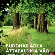 Buddhas ädla åttafaldiga väg : vision och omvandling  av Sangharakshita