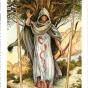 The Wildwood Tarot  Wherein Widsom Resides - Mark Ryan, John Matthews