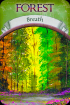 Earth Magic Oracle Cards - Steven D Farmer - in English