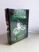 Earth Wisdom Oracle Cards av Barbara Moore - in English