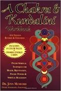 A Chakra and Kundalini Workbook  Psycho-Spiritual Techniques for Health, Rejuvenation, Psychic Powers and Spiritual Realization av John Mumford