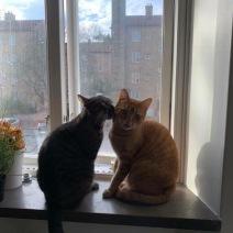 Pamela+Gustaf