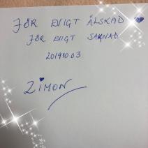 Zimon4