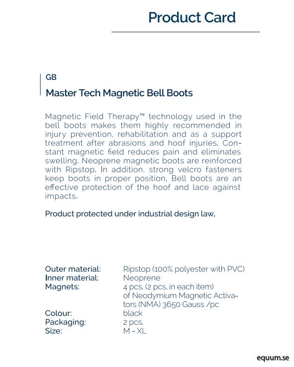 boot-magnetfälts