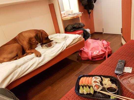 Dinner in bed..