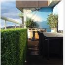 Bara Konstgjorda växter på detta Penthouse