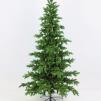 Norsk skogsgran - Julgran Picea topp.. 180cm