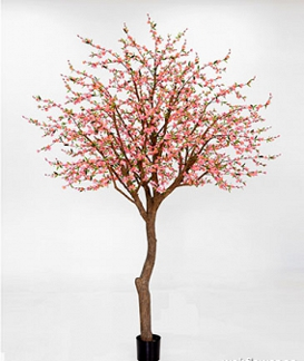 Körsbärsträd med glasfiberstam 350cm