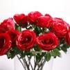 Röd fyllig Ros 65 cm