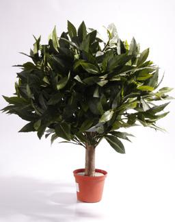 Lagerbolls träd 50 cm -