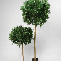 Lagerträd på stam bollform 110cm