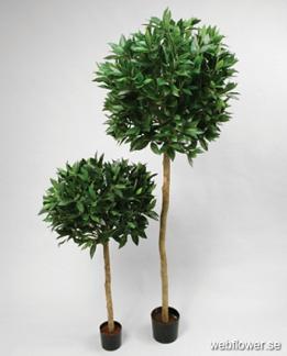 Lagerträd på stam bollform 110cm -