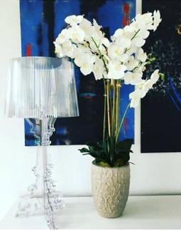 Vacker Phalaenopsis 110cm -