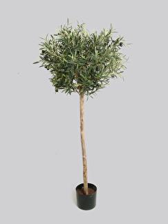 Trendigt Olivträd 140 cm - 140 cm