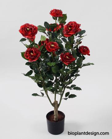 Ros Petra röd 86 cm